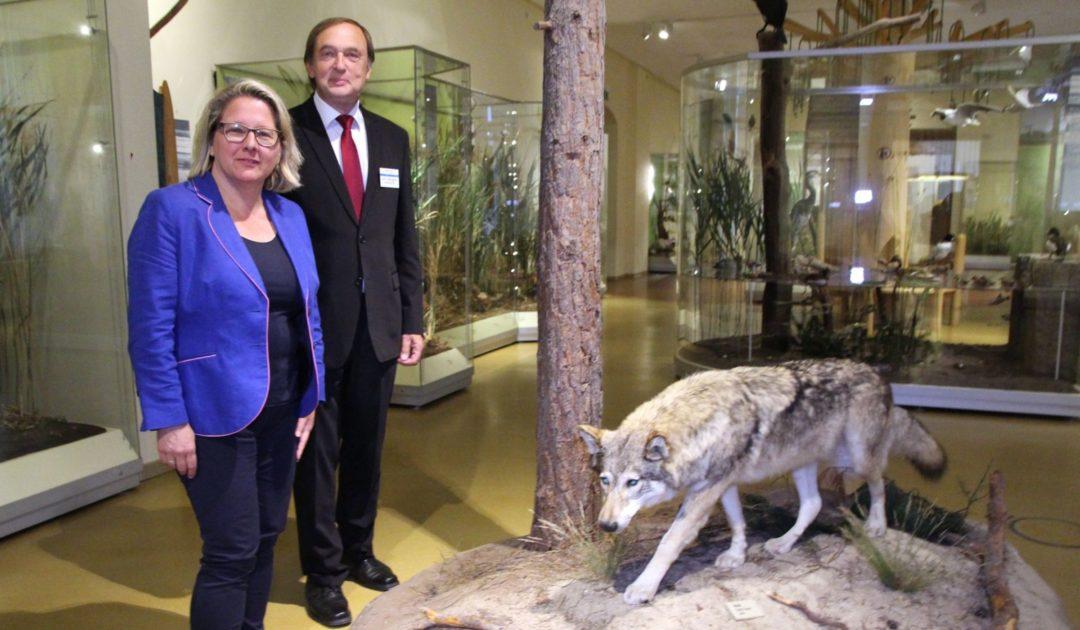 Bundesumweltministerin Svenja Schulze zu Besuch der DBBW bei Senckenberg Görlitz am 08.07.2019