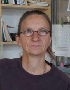Mitarbeiterin Margit Hanelt Görlitz