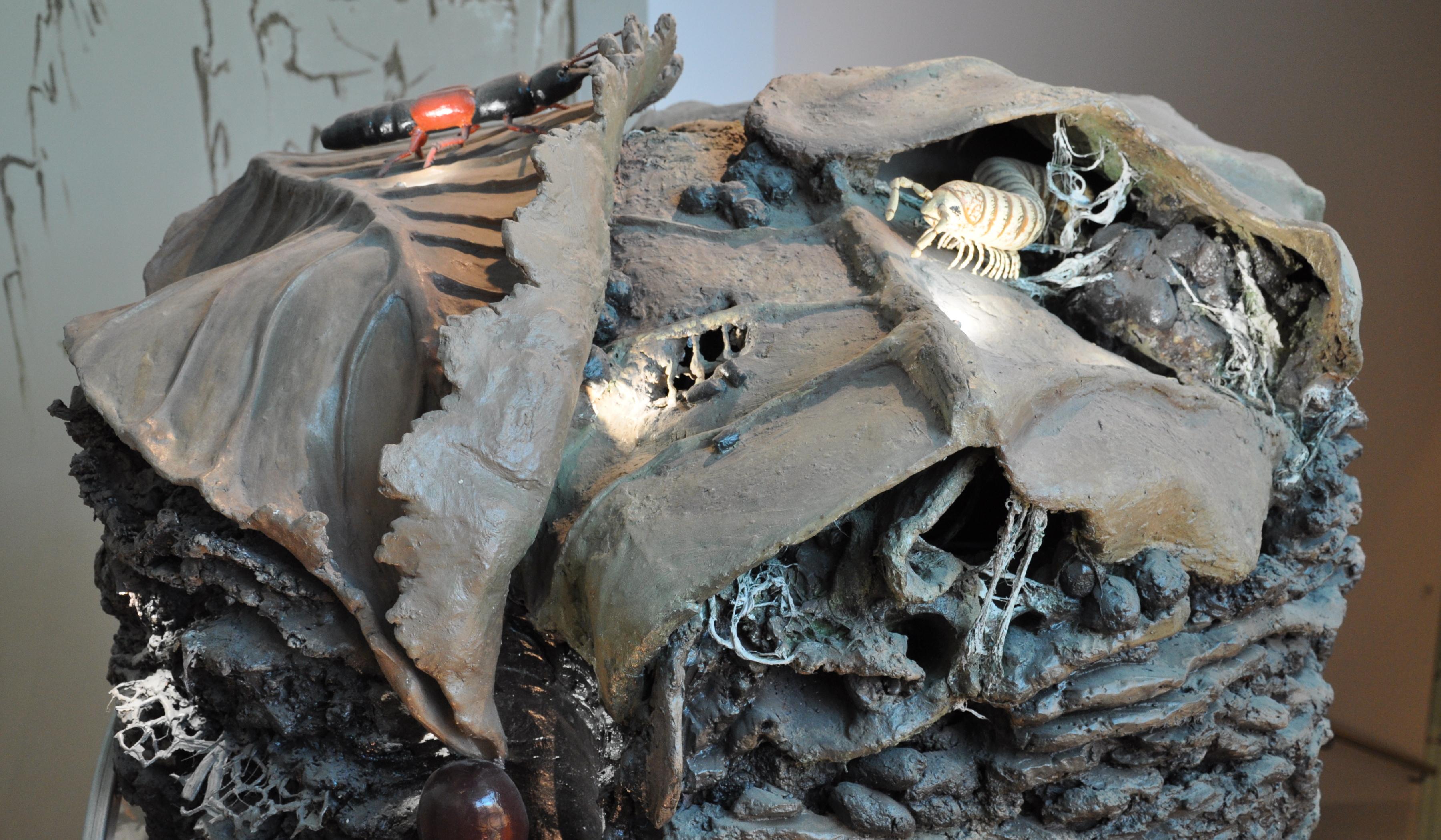 Senckenberg Museum für Naturkunde Görlitz Dauerausstellung Bodensäule (c) Paczos
