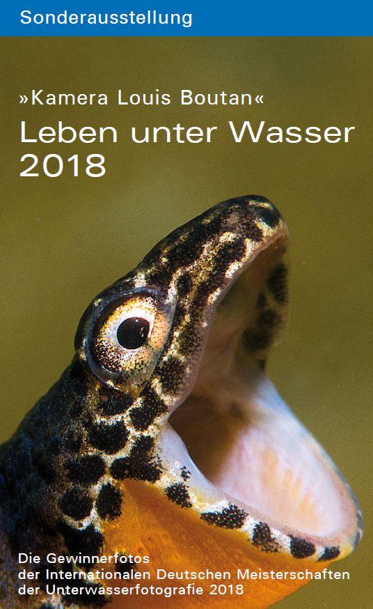 Sonderausstellung Leben unter Wasser 2018 Plakat
