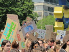 Fridays for Future Klimastreik Frankfurt