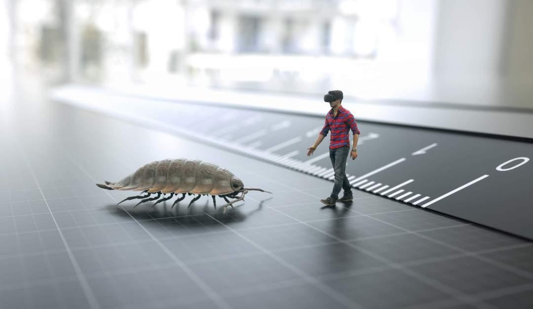 Virtual Reality Animation Bodenleben museum4punkt0