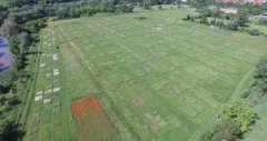 pm Biodiversitätsversuchsflächen 24.8.2020