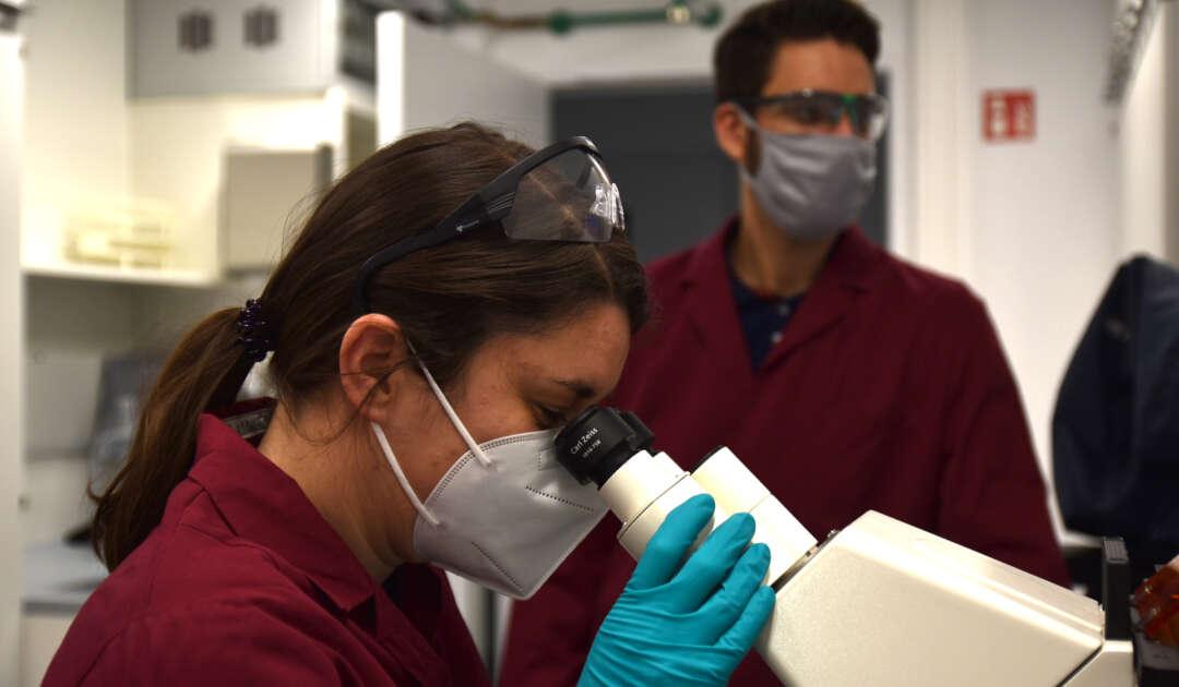 Dr. Kornelia Hardes im Forschungslabor am Fraunhofer-Institut für Molekularbiologie und Angewandte Oekologie