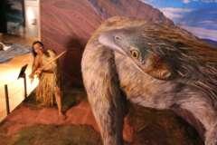 Sonderausstellung Tot wie ein Dodo