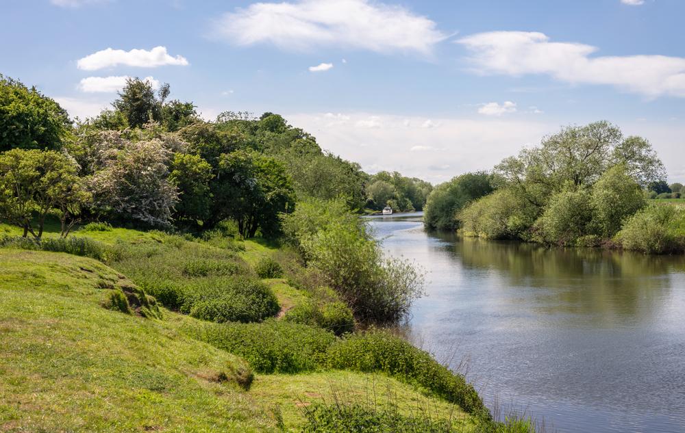 Fließgewässer zählen zu den dynamischsten und vielfältigsten Lebensräumen weltweit, doch viele der hier beheimateten Tier- und Pflanzenarten gelten als bedroht.