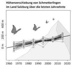Verbreitung Schmetterlinge Gebirge